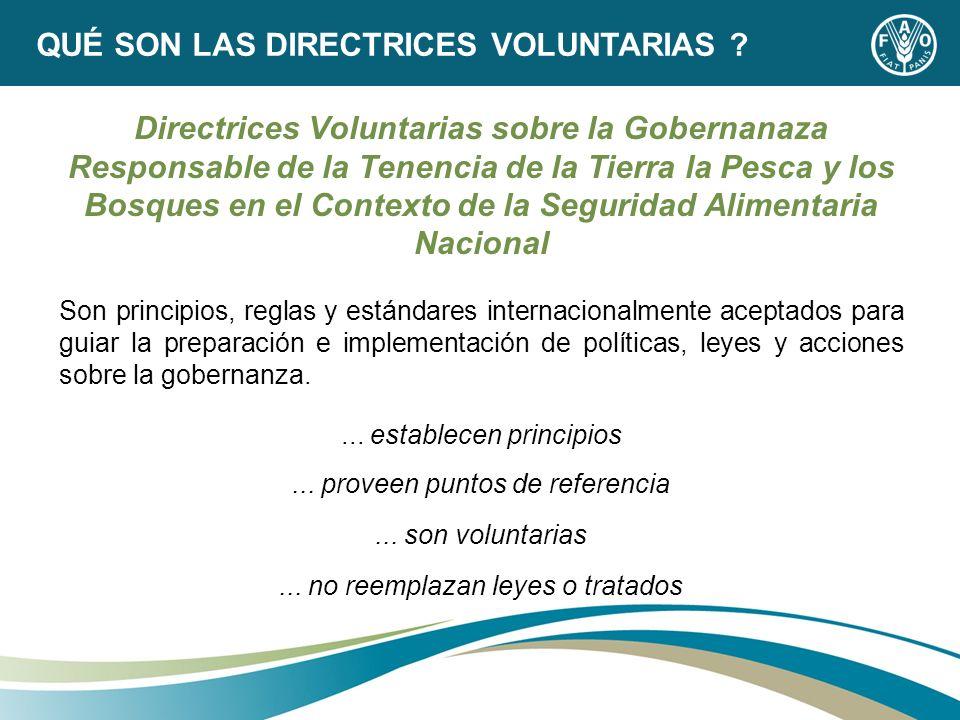 Directrices Voluntarias sobre la Gobernanaza Responsable de la Tenencia de la Tierra la Pesca y los Bosques en el Contexto de la Seguridad Alimentaria