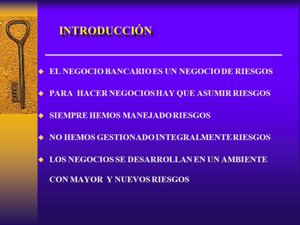 INTRODUCCIÓN EL NEGOCIO BANCARIO ES UN NEGOCIO DE RIESGOS PARA HACER NEGOCIOS HAY QUE ASUMIR RIESGOS SIEMPRE HEMOS MANEJADO RIESGOS NO HEMOS GESTIONADO INTEGRALMENTE RIESGOS LOS NEGOCIOS SE DESARROLLAN EN UN AMBIENTE CON MAYOR Y NUEVOS RIESGOS