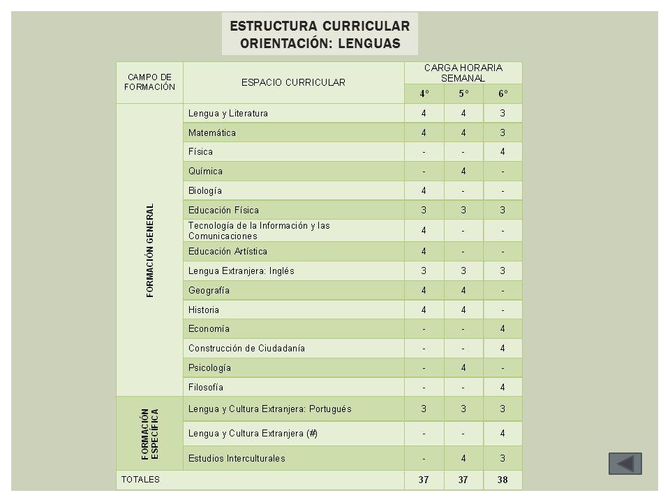 ESTRUCTURA CURRICULAR ORIENTACIÓN: LENGUAS