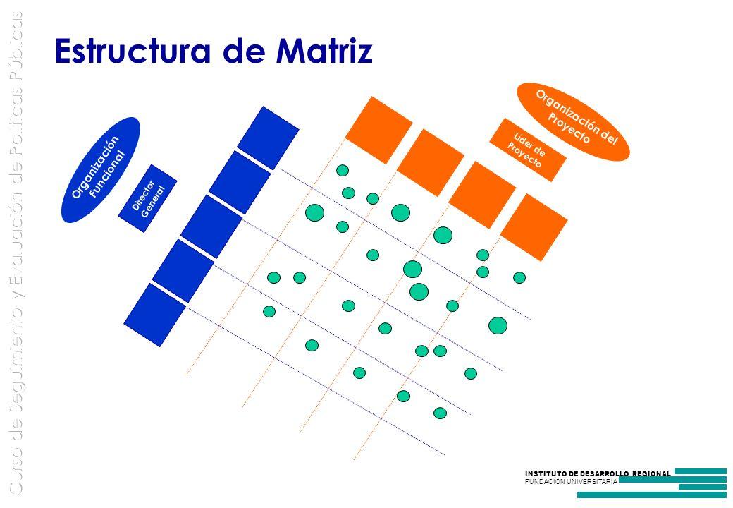 INSTITUTO DE DESARROLLO REGIONAL FUNDACIÓN UNIVERSITARIA Estructura de Matriz Líder de Proyecto Director General Organización Funcional Organización del Proyecto