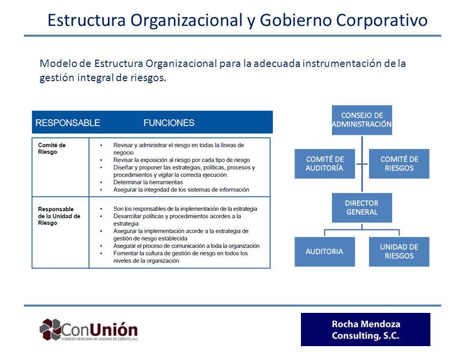 Modelo de Estructura Organizacional para la adecuada instrumentación de la gestión integral de riesgos. Estructura Organizacional y Gobierno Corporati