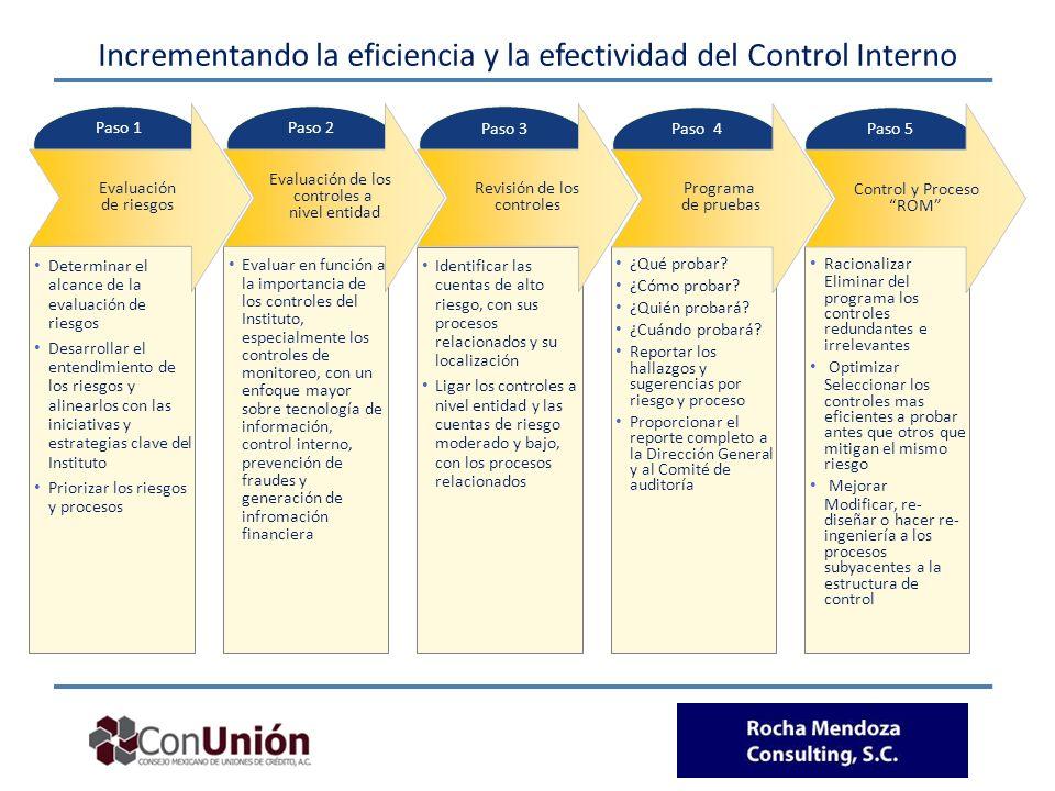 Incrementando la eficiencia y la efectividad del Control Interno Determinar el alcance de la evaluación de riesgos Desarrollar el entendimiento de los