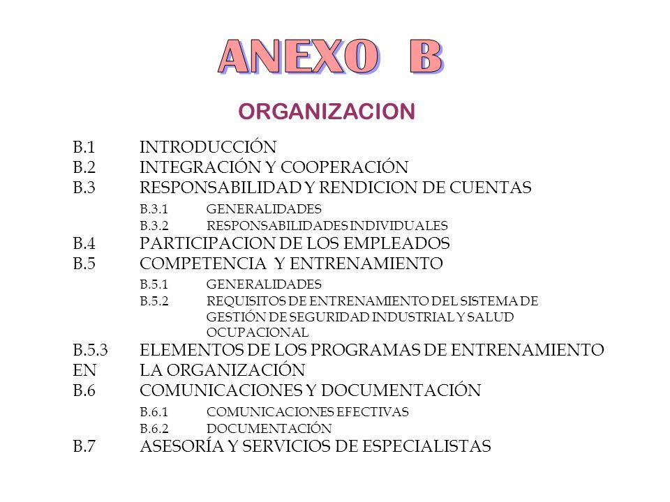 ORGANIZACION B.1INTRODUCCIÓN B.2INTEGRACIÓN Y COOPERACIÓN B.3 RESPONSABILIDAD Y RENDICION DE CUENTAS B.3.1GENERALIDADES B.3.2 RESPONSABILIDADES INDIVI