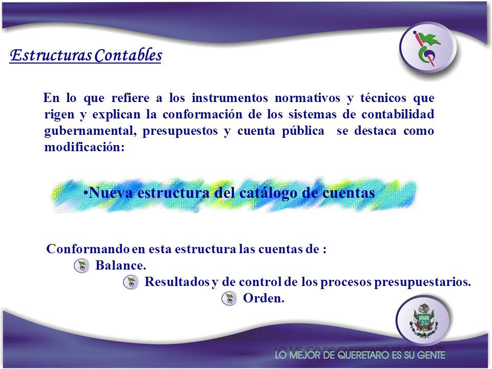 En lo que refiere a los instrumentos normativos y técnicos que rigen y explican la conformación de los sistemas de contabilidad gubernamental, presupu