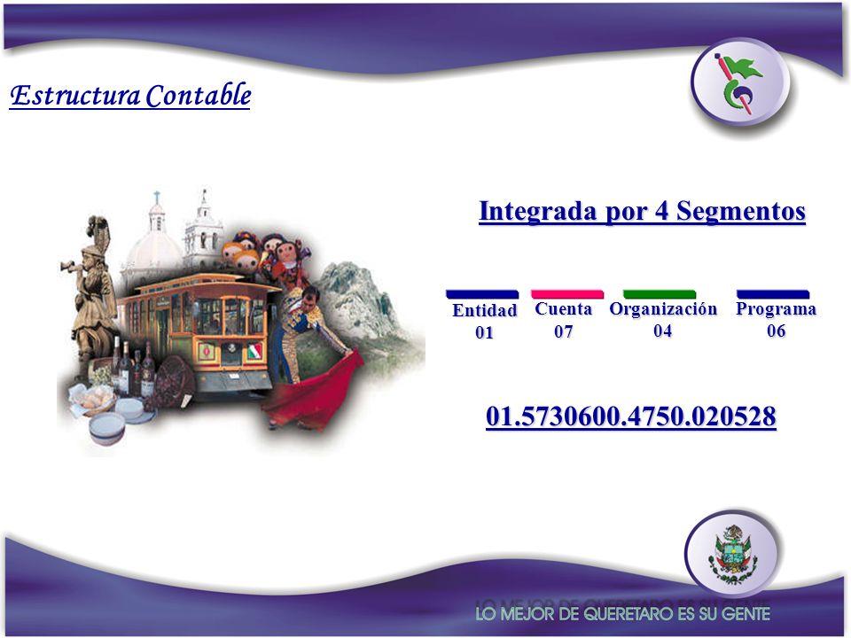 Programa06Organización04 Entidad01 Cuenta07 Integrada por 4 Segmentos 01.5730600.4750.020528 Estructura Contable