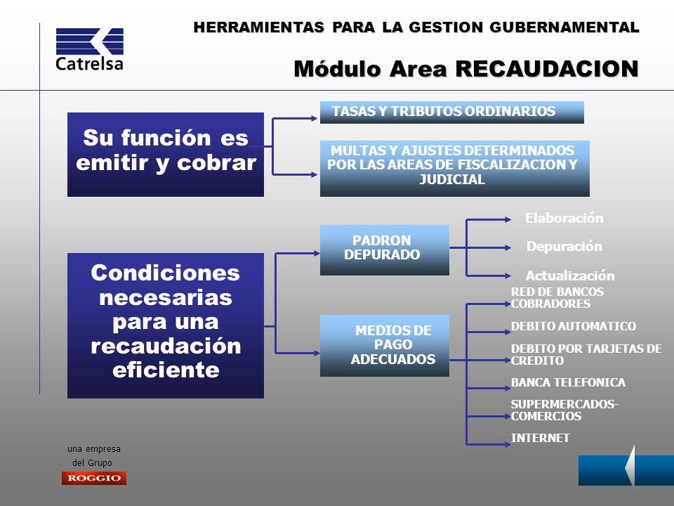 HERRAMIENTAS PARA LA GESTION GUBERNAMENTAL una empresa del Grupo PRINCIPALES FUNCIONES DEL AREA VERIFICAR LA CORRECTA LIQUIDACION DE LOS TRIBUTOS MEDIANTE LA ACCION DE AGENTES DE FISCALIZACION DETERMINAR AJUSTES TRIBUTARIOS CUANDO CORRESPONDAN Módulo Area FISCALIZACION