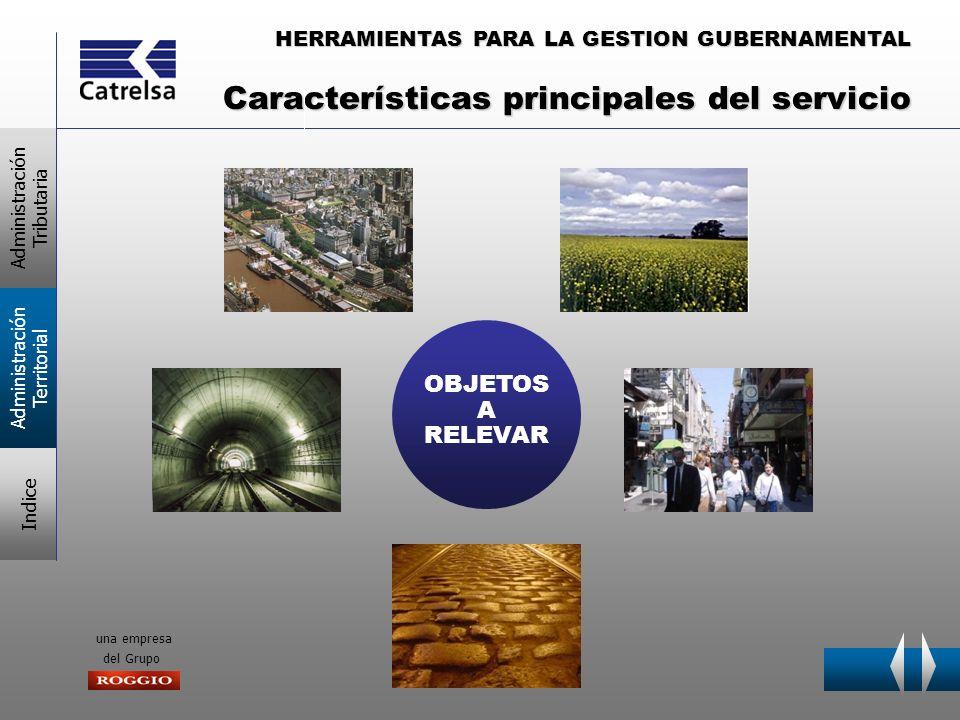 HERRAMIENTAS PARA LA GESTION GUBERNAMENTAL una empresa del Grupo Características principales del servicio OBJETOS A RELEVAR Administración Tributaria