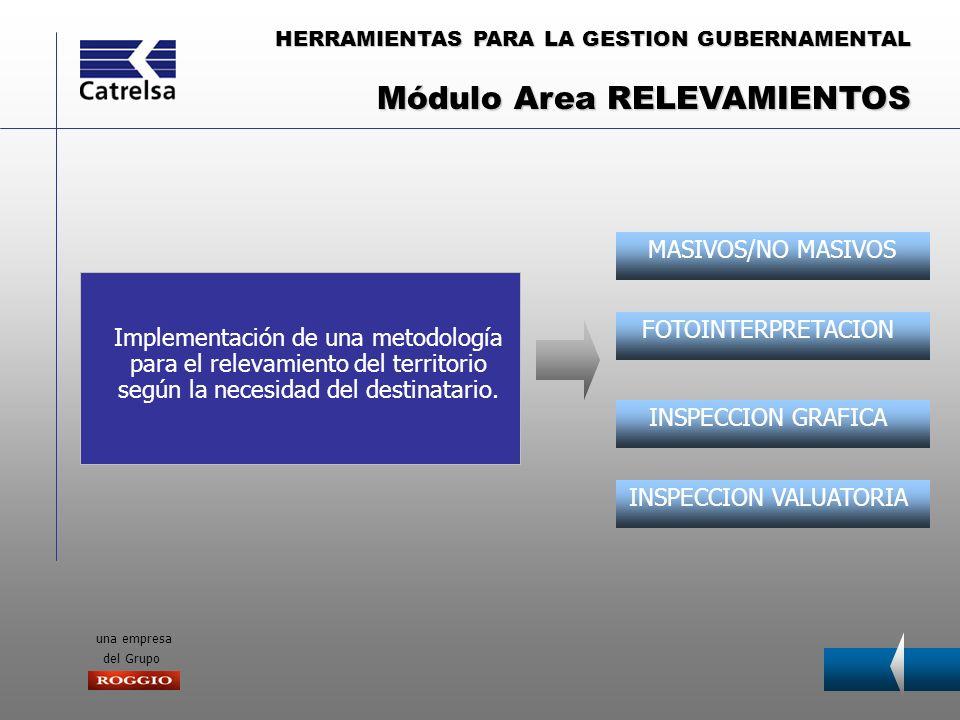 HERRAMIENTAS PARA LA GESTION GUBERNAMENTAL una empresa del Grupo HERRAMIENTAS DE ANALISIS APLICATIVOS ESPECIFICOS APLICACIONES MUNICIPALES Implementación de un Sistema de Información Geográfica que permita incorporar todos los datos gráficos y alfanuméricos relevados en un único sistema.