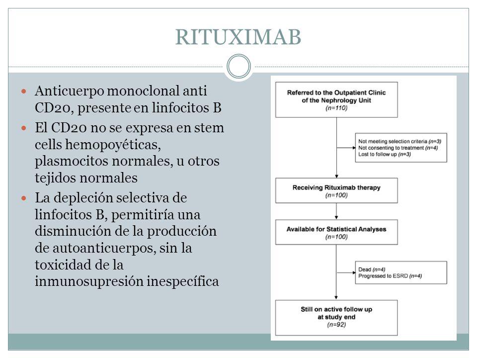 RITUXIMAB Anticuerpo monoclonal anti CD20, presente en linfocitos B El CD20 no se expresa en stem cells hemopoyéticas, plasmocitos normales, u otros t