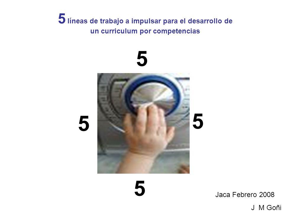 LÍNEAS DE TRABAJO PARA EL DESARROLLO DE UN CURRICULUM POR COMPETENCIAS Jaca Febrero 2008 J M Goñi 5 líneas de trabajo a impulsar para el desarrollo de