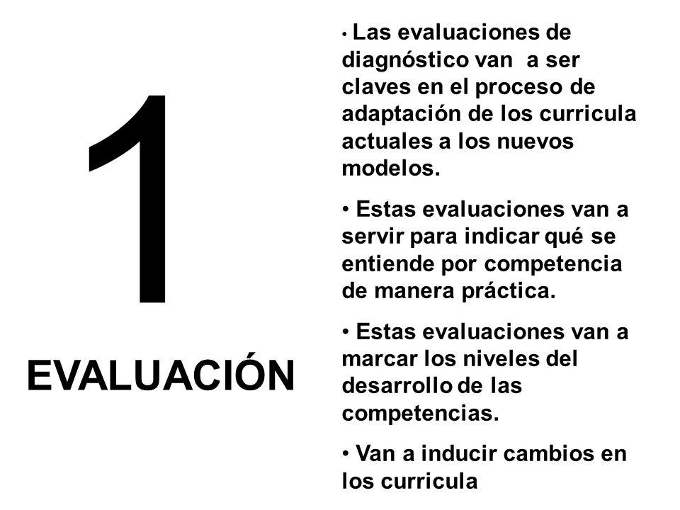 1 EVALUACIÓN Las evaluaciones de diagnóstico van a ser claves en el proceso de adaptación de los curricula actuales a los nuevos modelos.
