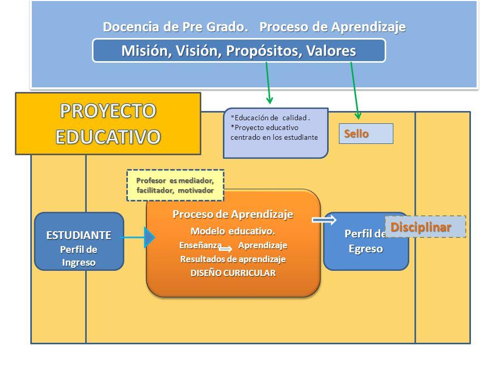 pe Docencia de Pre Grado. Proceso de Aprendizaje Misión, Visión, Propósitos, Valores ESTUDIANTE Perfil de Ingreso Proceso de Aprendizaje Modelo educat