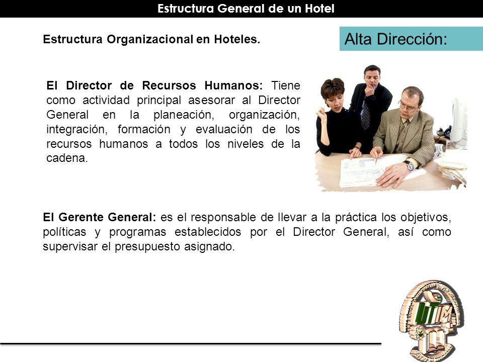 Alta Dirección: El Director de Recursos Humanos: Tiene como actividad principal asesorar al Director General en la planeación, organización, integraci