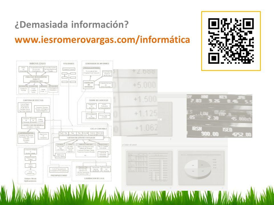 Organice por secciones ¿Demasiada información www.iesromerovargas.com/informática