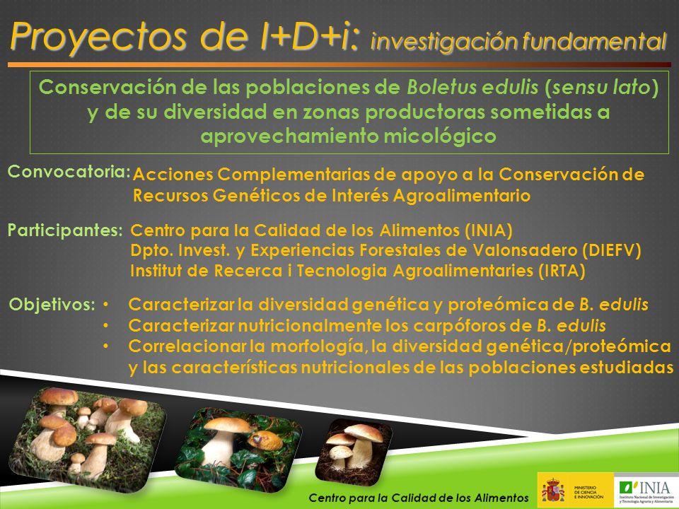 Conservación de las poblaciones de Boletus edulis ( sensu lato ) y de su diversidad en zonas productoras sometidas a aprovechamiento micológico Convoc