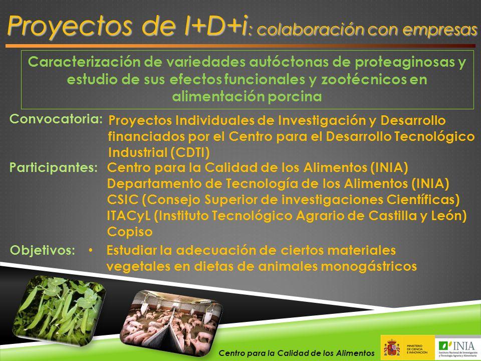 Caracterización de variedades autóctonas de proteaginosas y estudio de sus efectos funcionales y zootécnicos en alimentación porcina Proyectos de I+D+
