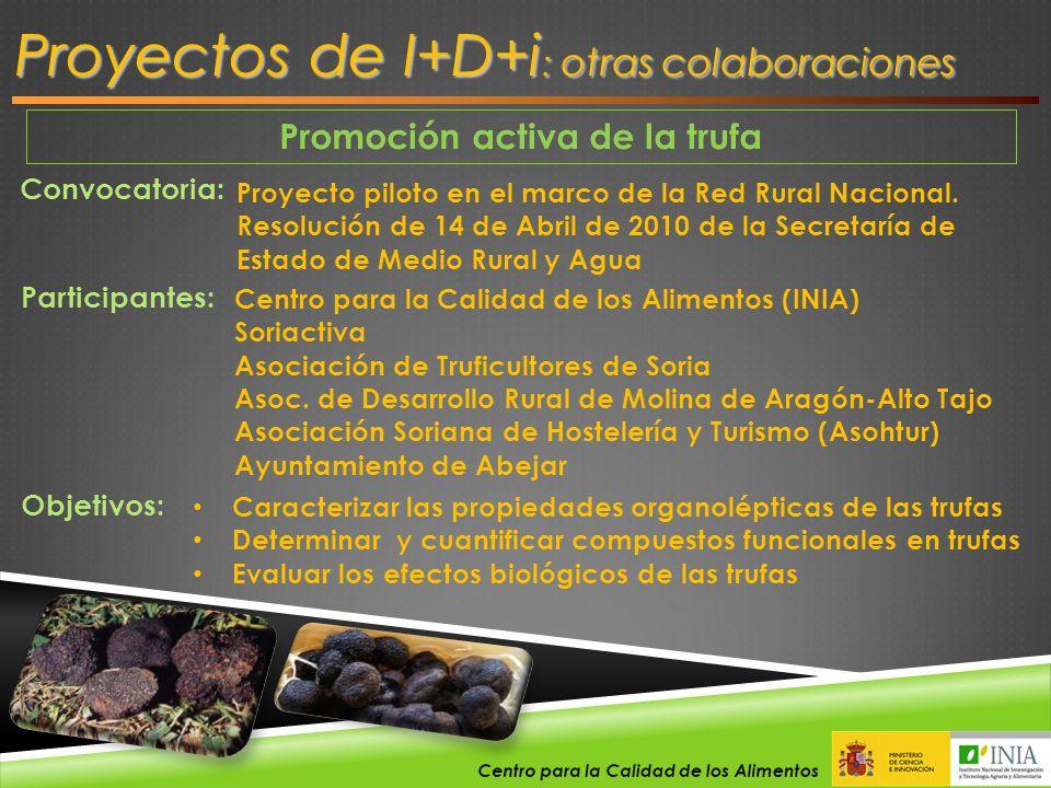 Promoción activa de la trufa Proyectos de I+D+i : otras colaboraciones Convocatoria: Proyecto piloto en el marco de la Red Rural Nacional. Resolución