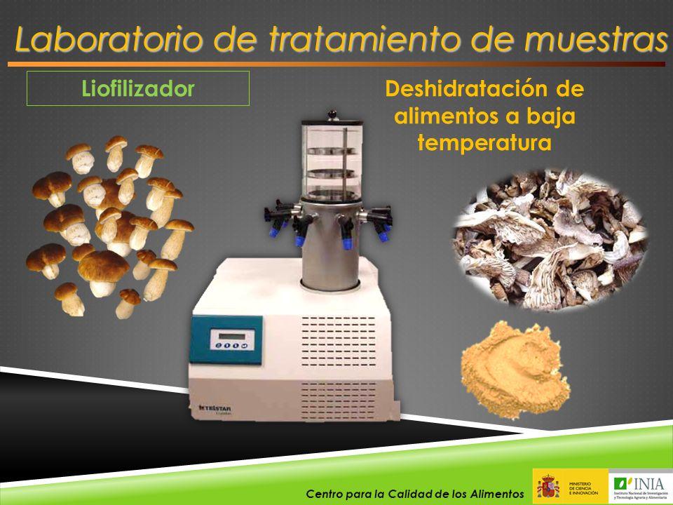 Liofilizador Laboratorio de tratamiento de muestras Deshidratación de alimentos a baja temperatura