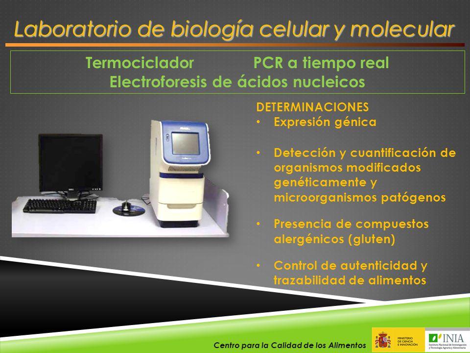 Termociclador PCR a tiempo real Electroforesis de ácidos nucleicos Laboratorio de biología celular y molecular DETERMINACIONES Expresión génica Detecc