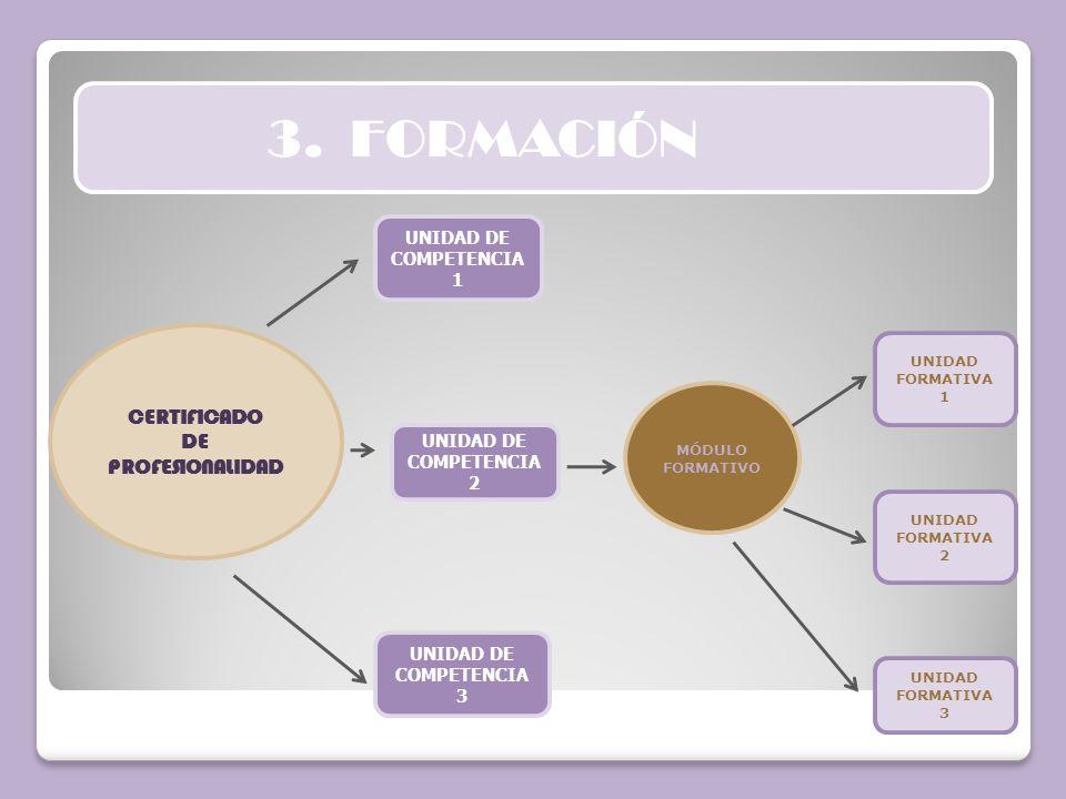 3. FORMACIÓN CERTIFICADO DE PROFESIONALIDAD UNIDAD DE COMPETENCIA 1 UNIDAD DE COMPETENCIA 2 UNIDAD DE COMPETENCIA 3 MÓDULO FORMATIVO UNIDAD FORMATIVA
