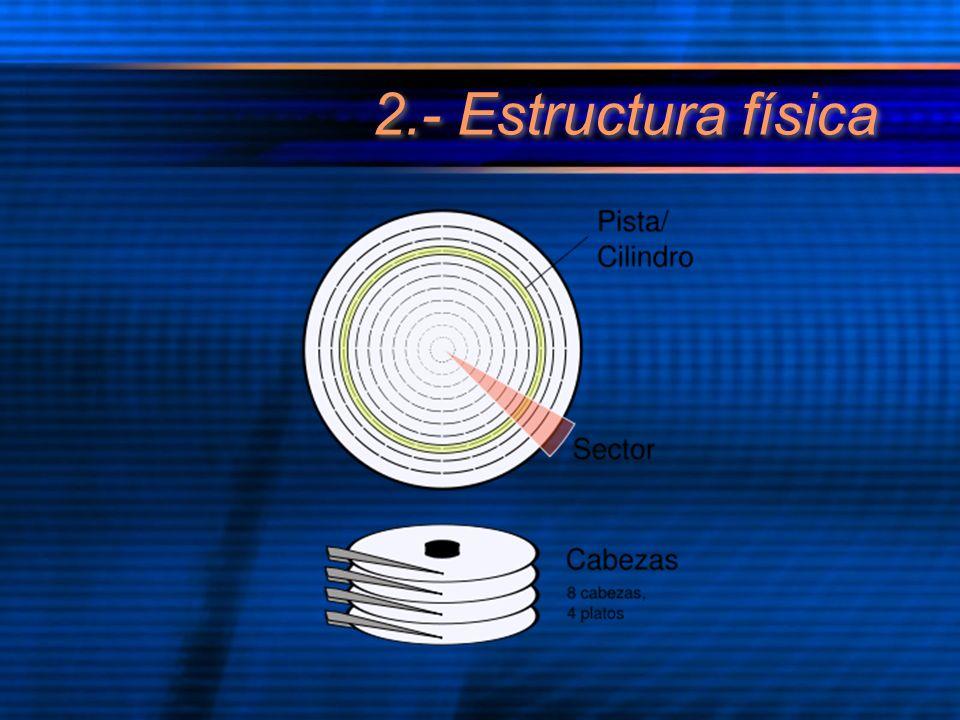 2.- Estructura física