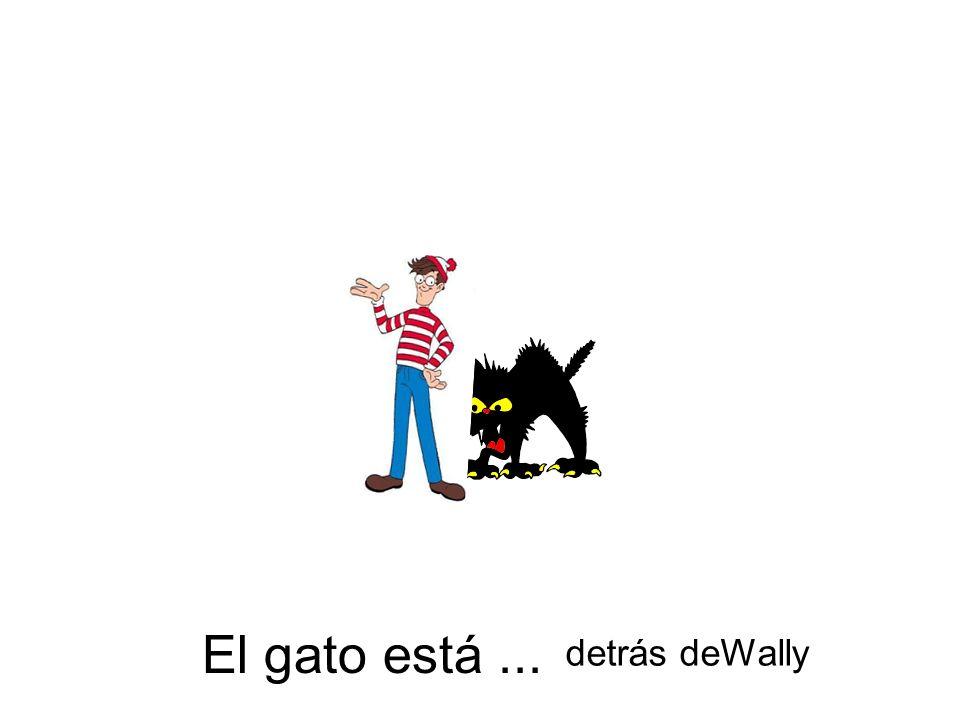 El gato está... detrás deWally
