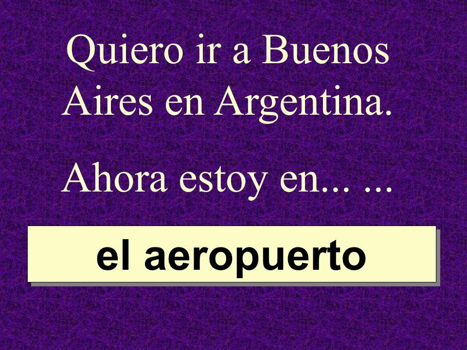 Quiero ir a Buenos Aires en Argentina. Ahora estoy en...... el aeropuerto el aeropuerto