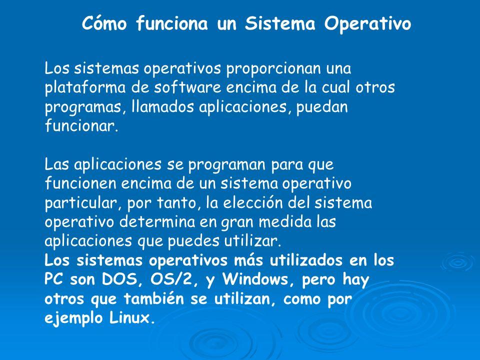 Los sistemas operativos proporcionan una plataforma de software encima de la cual otros programas, llamados aplicaciones, puedan funcionar. Las aplica