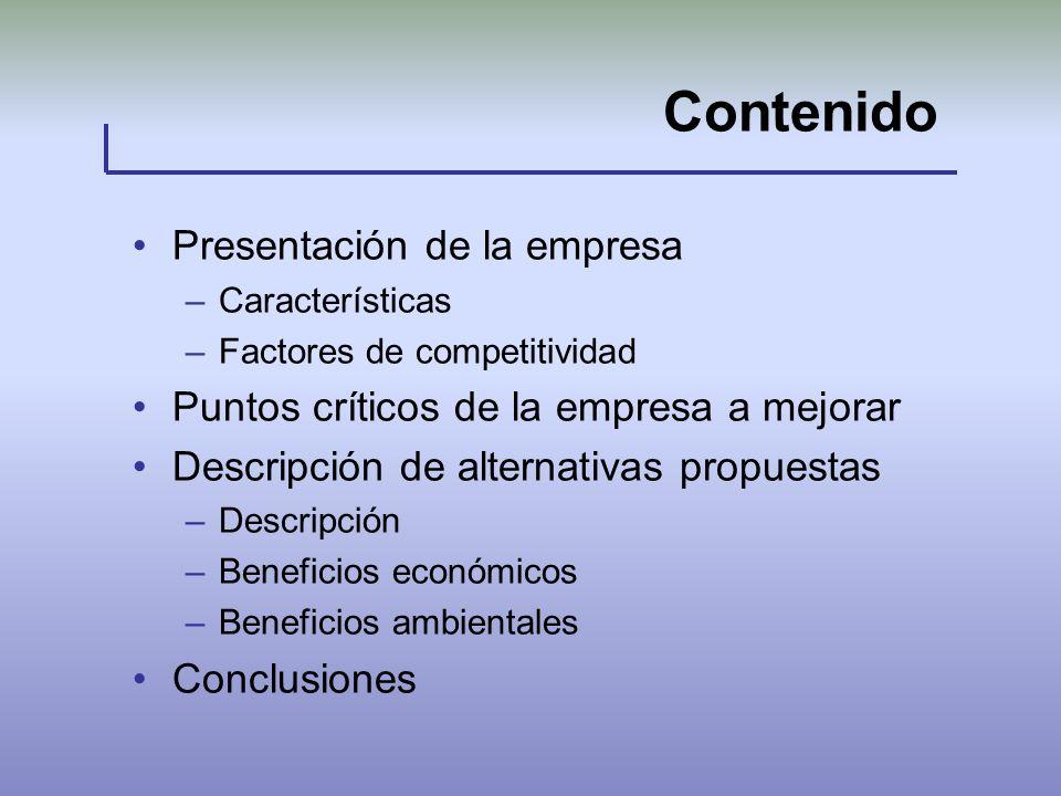 Contenido Presentación de la empresa –Características –Factores de competitividad Puntos críticos de la empresa a mejorar Descripción de alternativas