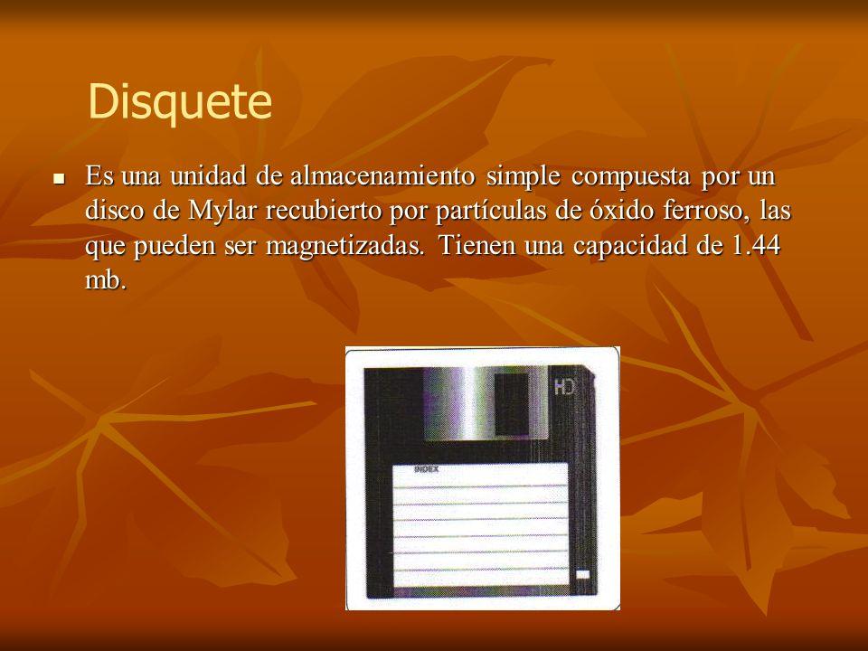 Es una unidad de almacenamiento simple compuesta por un disco de Mylar recubierto por partículas de óxido ferroso, las que pueden ser magnetizadas. Ti
