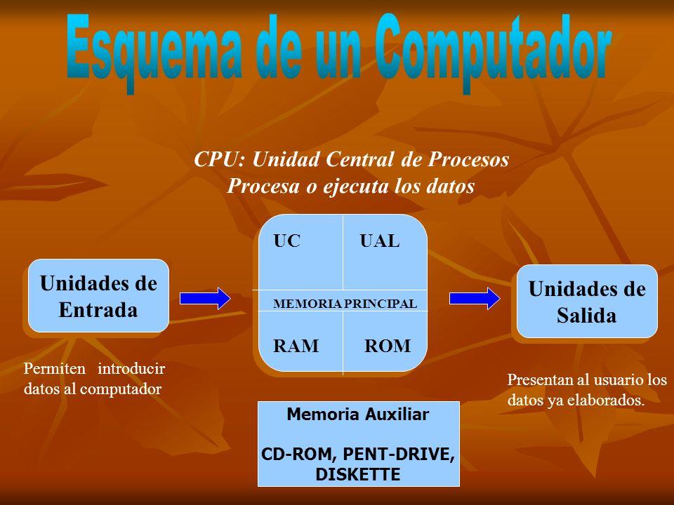 Permiten introducir datos al computador Presentan al usuario los datos ya elaborados. Unidades de Entrada Unidades de Entrada UC UAL MEMORIA PRINCIPAL