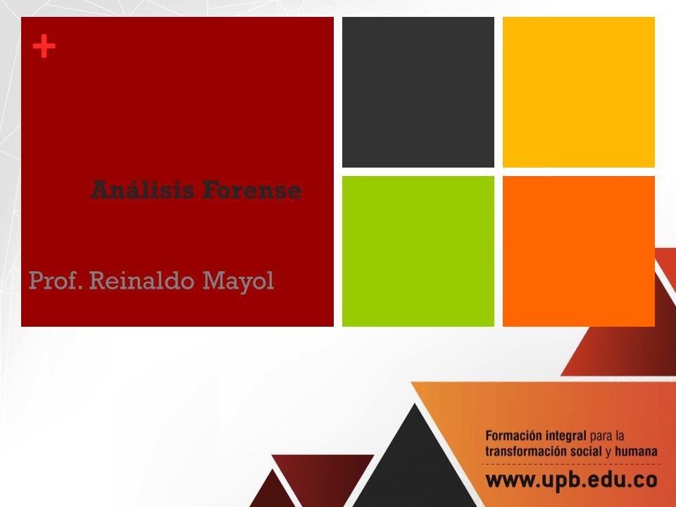 + Análisis Forense Prof. Reinaldo Mayol