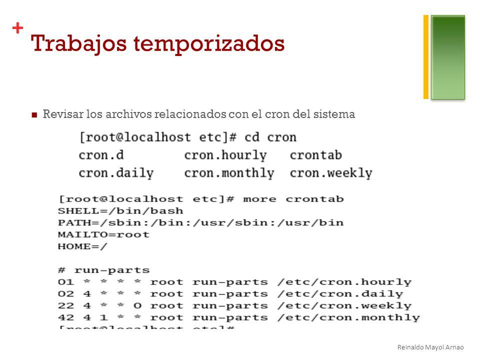 + Trabajos temporizados Revisar los archivos relacionados con el cron del sistema Reinaldo Mayol Arnao