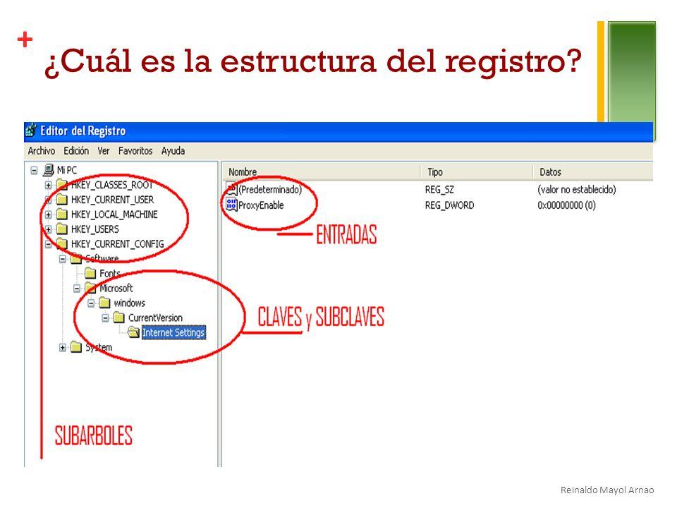 + ¿Cuál es la estructura del registro? Reinaldo Mayol Arnao