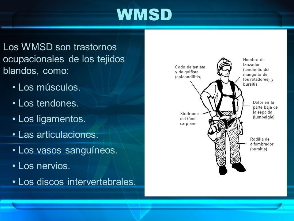 6 Los WMSD son trastornos ocupacionales de los tejidos blandos, como: Los músculos. Los tendones. Los ligamentos. Las articulaciones. Los vasos sanguí