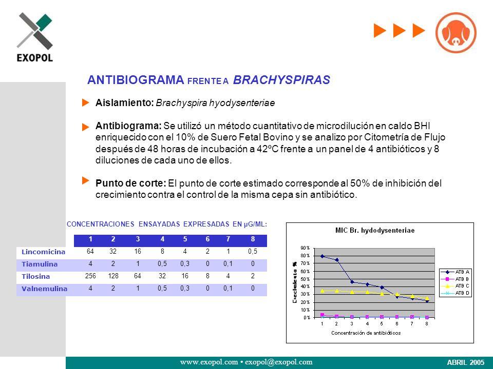 www.exopol.com exopol@exopol.com ABRIL 2005 Aislamiento: Brachyspira hyodysenteriae Antibiograma: Se utilizó un método cuantitativo de microdilución e