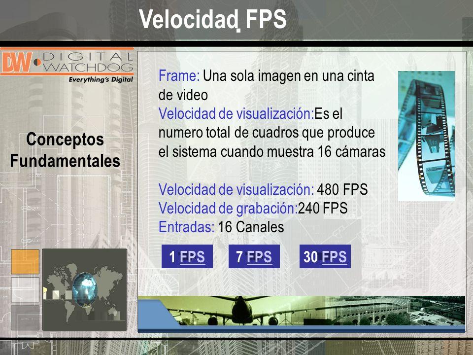 . Conceptos Fundamentales Frame: Una sola imagen en una cinta de video Velocidad de visualización:Es el numero total de cuadros que produce el sistema cuando muestra 16 cámaras Velocidad de visualización: 480 FPS Velocidad de grabación:240 FPS Entradas: 16 Canales 1 FPS7 FPS30 FPS Velocidad FPS