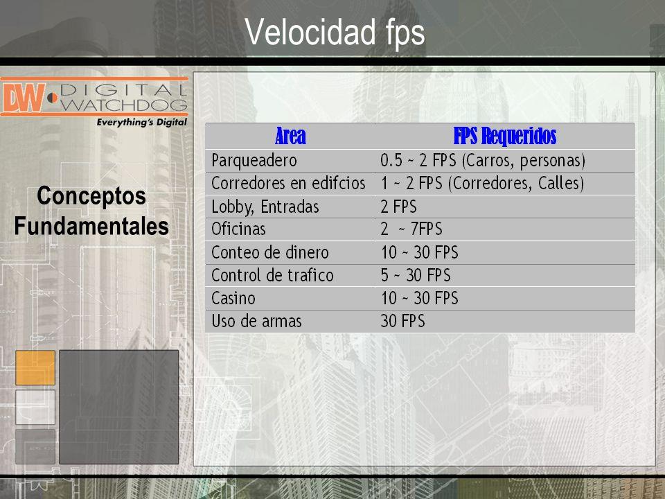 Velocidad fps Conceptos Fundamentales