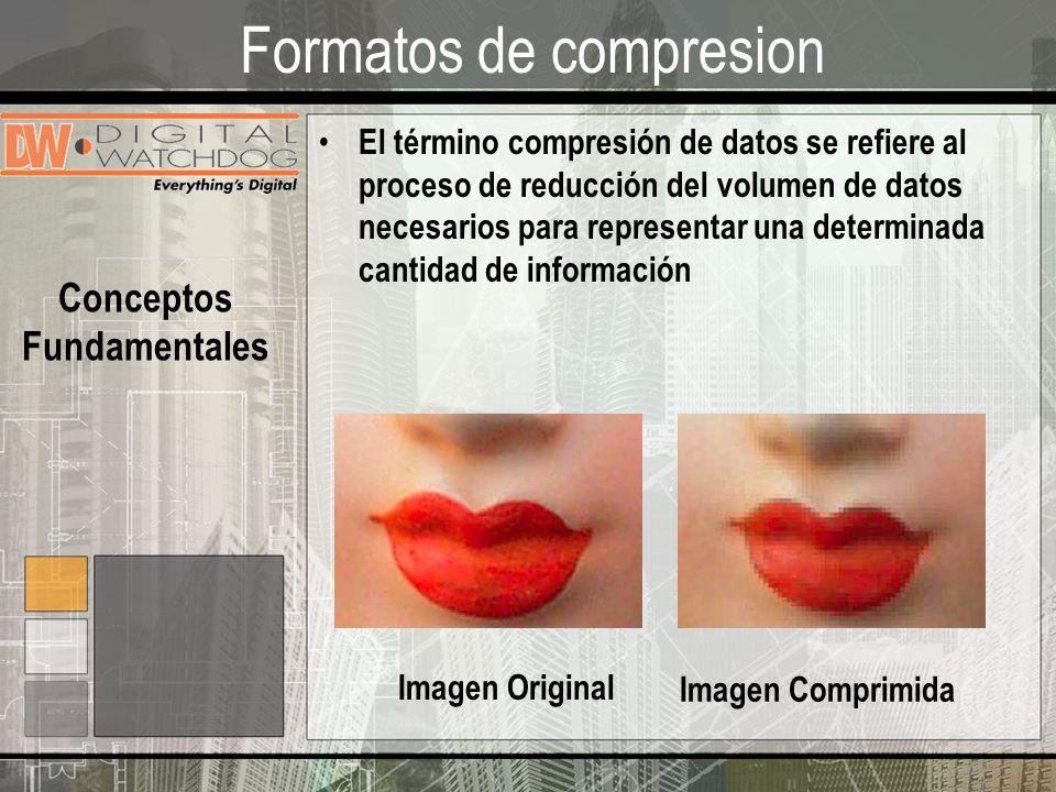 Formatos de compresion El término compresión de datos se refiere al proceso de reducción del volumen de datos necesarios para representar una determinada cantidad de información Imagen Original Imagen Comprimida Conceptos Fundamentales