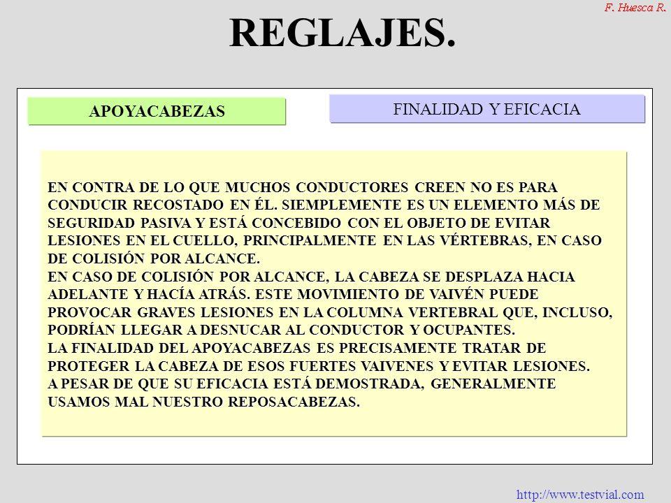 http://www.testvial.com CINTURÓN DE SEGURIDAD. FINALIDAD Y EFICACIA ASIENTOS EN LOS QUE SON OBLIGATORIOS REGLAJE Y CORRECTA COLOCACIÓN OBLIGATORIEDAD