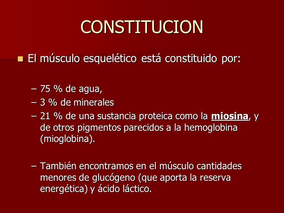 El músculo esquelético está constituido por: El músculo esquelético está constituido por: –75 % de agua, –3 % de minerales –21 % de una sustancia prot