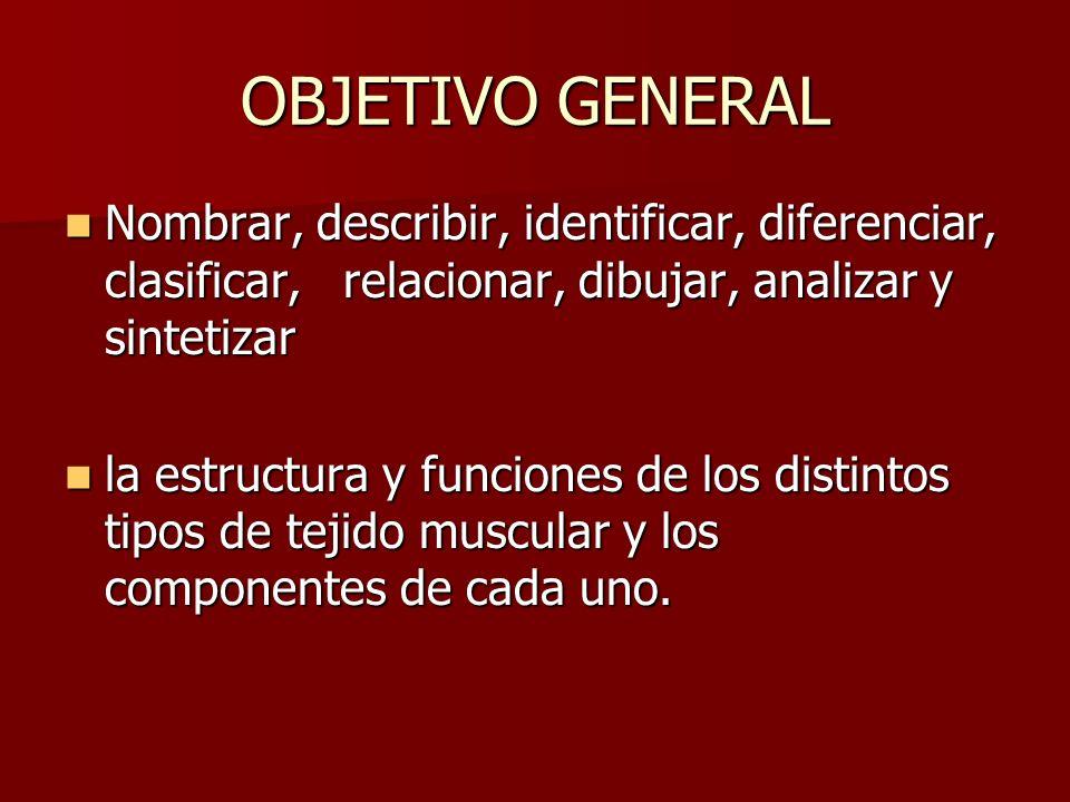 OBJETIVO GENERAL Nombrar, describir, identificar, diferenciar, clasificar, relacionar, dibujar, analizar y sintetizar Nombrar, describir, identificar,