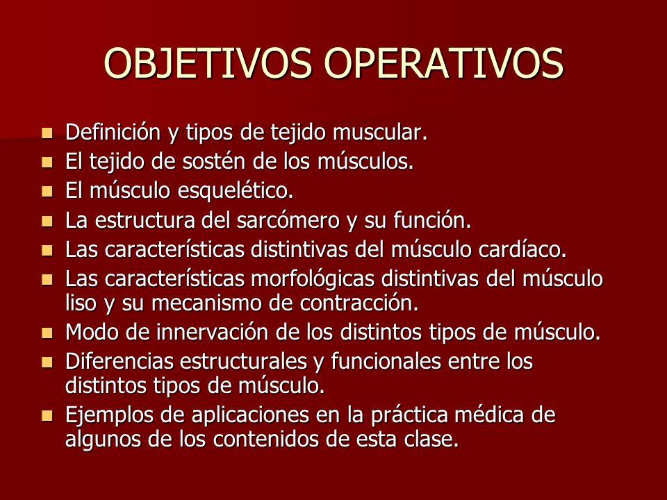 OBJETIVOS OPERATIVOS Definición y tipos de tejido muscular. Definición y tipos de tejido muscular. El tejido de sostén de los músculos. El tejido de s