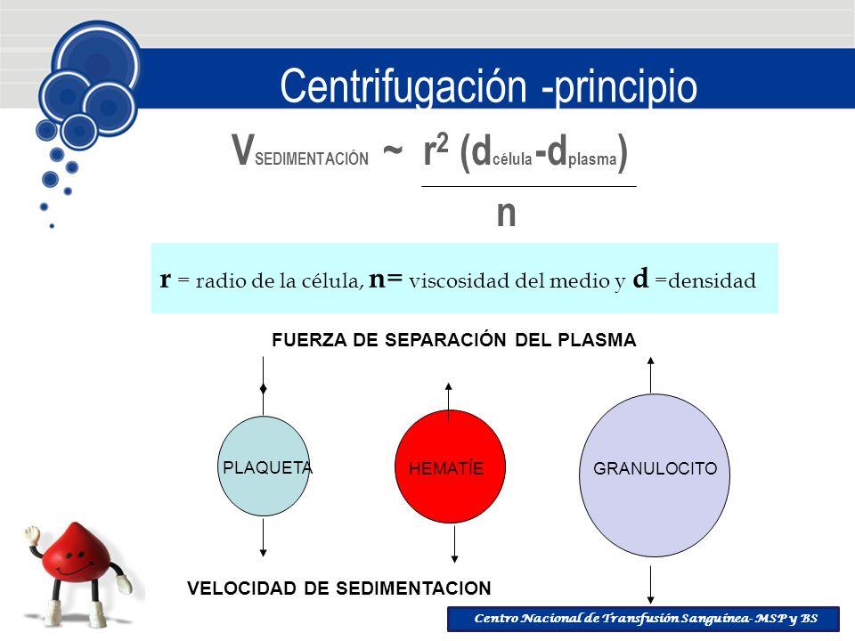 Centro Nacional de Transfusión Sanguínea- MSP y BS Centrifugación -principio V SEDIMENTACIÓN ~ r 2 (d célula -d plasma ) n r = radio de la célula, n =