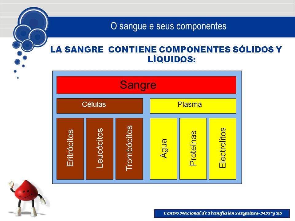 Centro Nacional de Transfusión Sanguínea- MSP y BS O sangue e seus componentes LA SANGRE CONTIENE COMPONENTES SÓLIDOS Y LÍQUIDOS: Sangre Células Plasm
