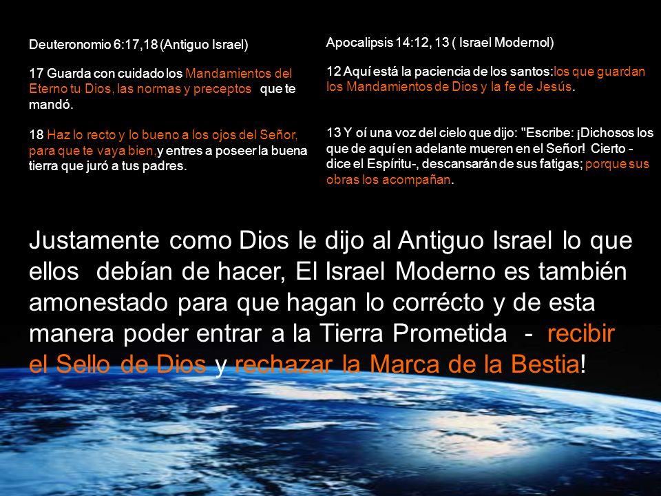 Deuteronomio 6:13-15 (el Antiguo Israel) 13 Al Eterno tu Dios temerás, a él servirás y por su nombre jurarás. 14 No sigáis a otros dioses, a los diose