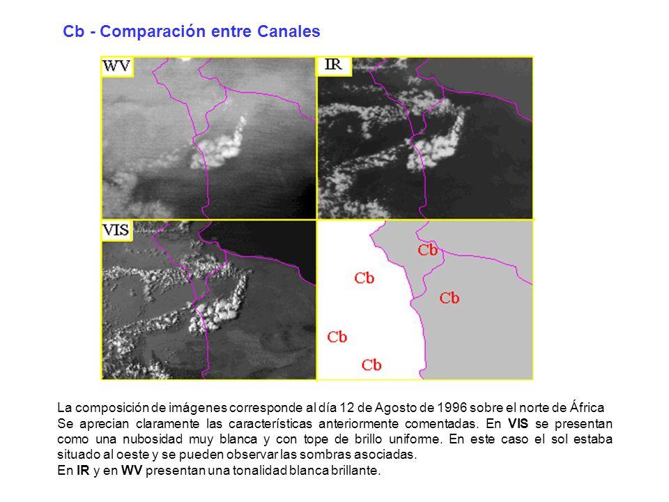 La composición de imágenes corresponde al día 12 de Agosto de 1996 sobre el norte de África Se aprecian claramente las características anteriormente c