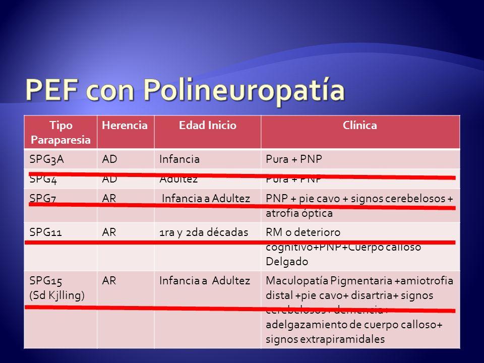 Tipo Paraparesia HerenciaEdad InicioClínica SPG3AADInfanciaPura + PNP SPG4ADAdultezPura + PNP SPG7AR Infancia a AdultezPNP + pie cavo + signos cerebelosos + atrofia óptica SPG11AR1ra y 2da décadasRM o deterioro cognitivo+PNP+Cuerpo calloso Delgado SPG15 (Sd Kjlling) ARInfancia a AdultezMaculopatía Pigmentaria +amiotrofia distal +pie cavo+ disartria+ signos cerebelosos+ demencia+ adelgazamiento de cuerpo calloso+ signos extrapiramidales