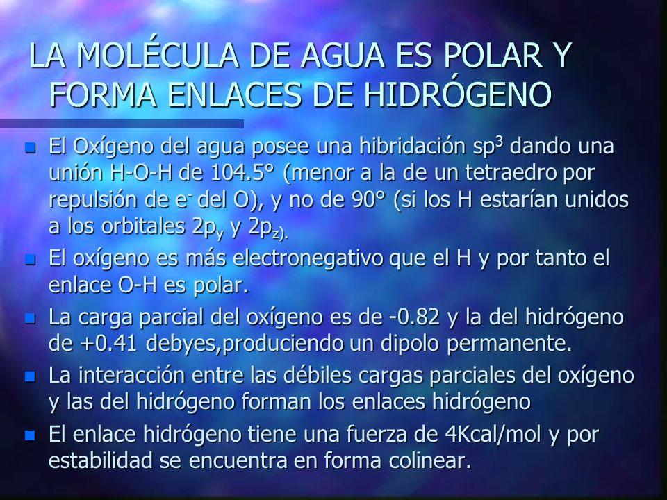 Estructura del hielo: Los átomos de oxígeno e hidrógeno están en rojo y blanco respectivamente.