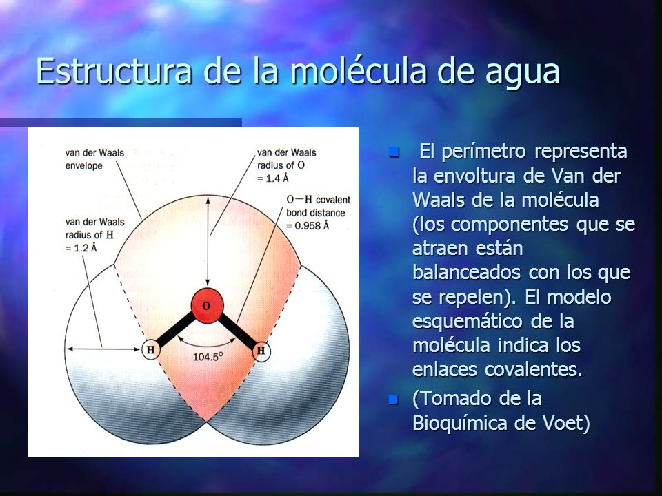 LA MOLÉCULA DE AGUA ES POLAR Y FORMA ENLACES DE HIDRÓGENO n El Oxígeno del agua posee una hibridación sp 3 dando una unión H-O-H de 104.5° (menor a la de un tetraedro por repulsión de e - del O), y no de 90° (si los H estarían unidos a los orbitales 2p y y 2p z).